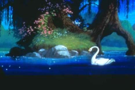 La Magia del Lago dell'Accesa- Un racconto per l'estate