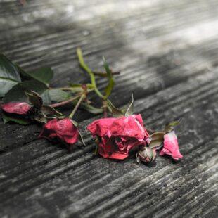 """""""Hai trasformato i miei sorrisi in lacrime"""": storia di una relazione tossica"""